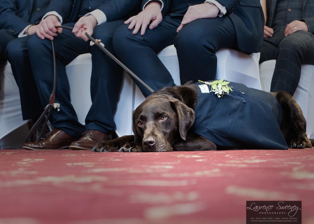 Hedley_Wedding Website 1024-6